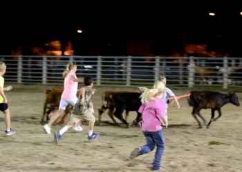 suhls rodeo kids chasing calves