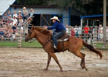 woman blue shirt barrel racing