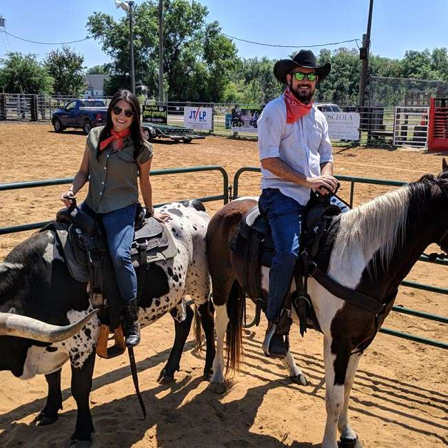 team building activities on horse and steer