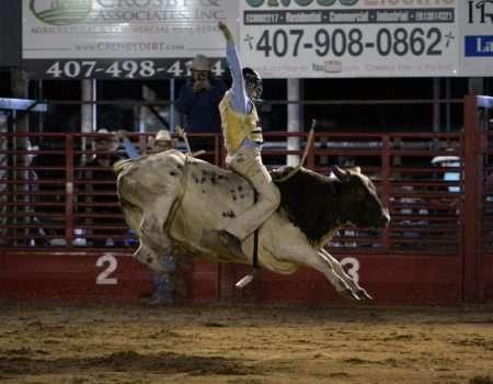 bull rider 5