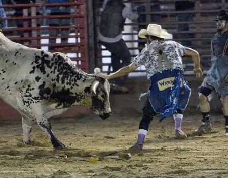 bullfighter 1