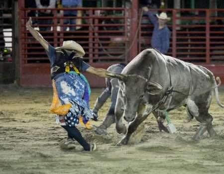 bullfighter 2