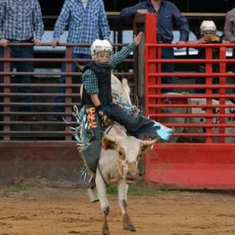 suhls rodeo bull riding contestant
